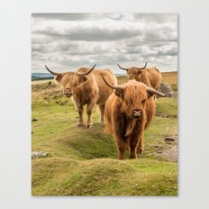 Three Highlanders Canvas Print