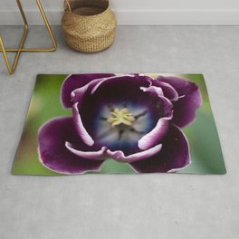 the empty vessel makes the greatest sound Rug