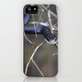Sneaky Snake iPhone Case