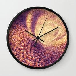 Intestines Wall Clock