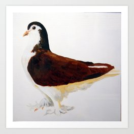 Pigeon Portrait - Red Lahore Art Print