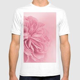 Light Pink Rose #1 #floral #art #society6 T-shirt