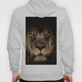 The black lion Hoody