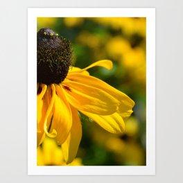 Piece of summer Art Print