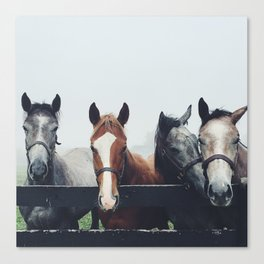 A Little Nudge from Your Friends Canvas Print