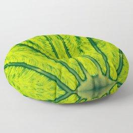 Biomimicry - Biomaterials - Symmetry Floor Pillow