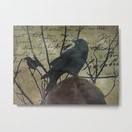 The Raven Speaks - Crow on Stone A675 Metal Print