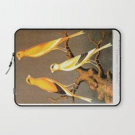 Orange Canaries  Laptop Sleeve