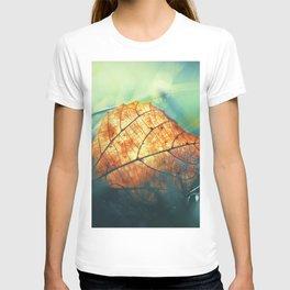 Autumn Gift T-shirt