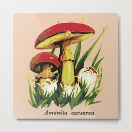 Mushroom illustration : Amanita caesarea Metal Print