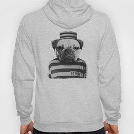 Pug Convict Hoody