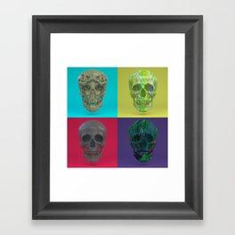 Skull Collection 03 Framed Art Print