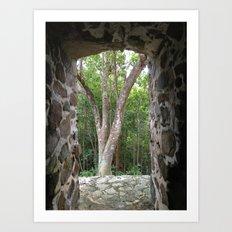 Window to the Woods, St. John, Virgin Islands, Sugar Mill Stone Ruins,  Art Print