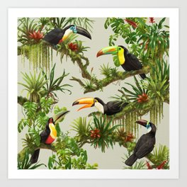Toucans and Bromeliads (Canvas Background) Art Print