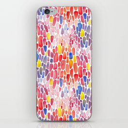 Rainbow Crowd iPhone Skin