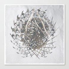 ferman 07 Canvas Print