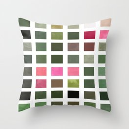Pink Roses in Anzures 5  Abstract Rectangles 2 Throw Pillow
