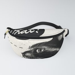 What? Fanny Pack