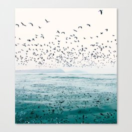 Birds Reflected Fine Art Print Canvas Print