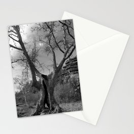 Seen things Stationery Cards