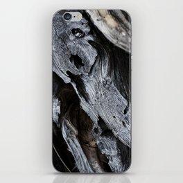 300 Year Old Tree Bark 2 iPhone Skin