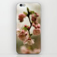 blossom iPhone & iPod Skins featuring blossom by EnglishRose23