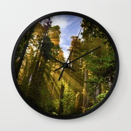 Redwood Forest Sunrise Wall Clock
