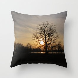 Ixonia Marsh Throw Pillow