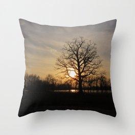 Ixonia Marsh Throw Pillow