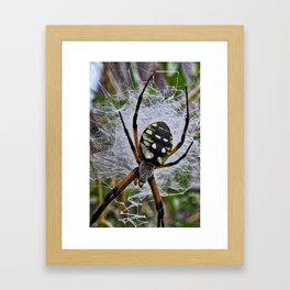 Momma Framed Art Print