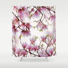 magnolia 029