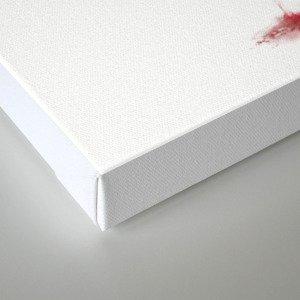 Mutilated Nub Fiend Canvas Print