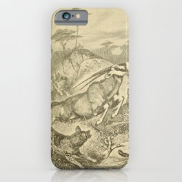 Vintage Print - Animals in Action (1901) - An Oryx Antelope pursued by Painted Hyenas iPhone Case