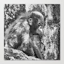 AnimalArtBW_OrangUtan_20170907_by_JAMColorsSpecial Canvas Print