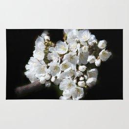 blossoms on black background -04- Rug