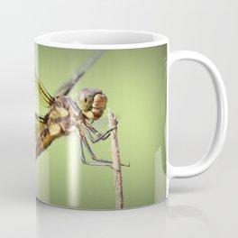 Hey guys! Coffee Mug