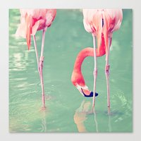 flamingos Canvas Prints featuring Flamingos  by Laura Ruth