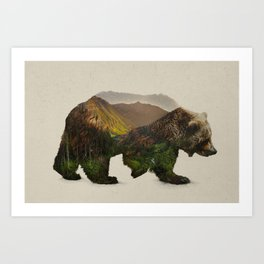 North American Brown Bear Art Print
