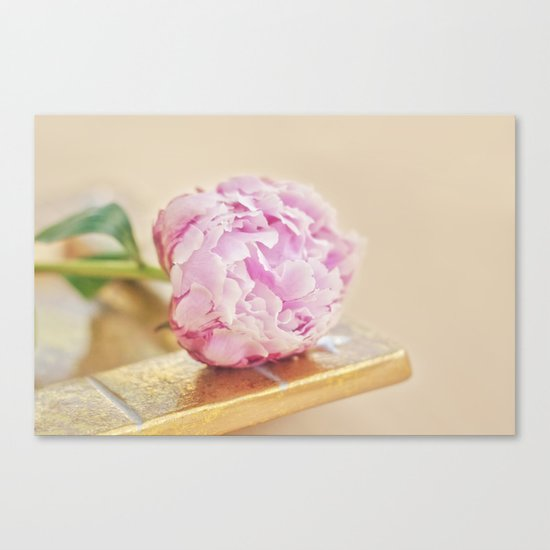 PEONY WITH GOLD Canvas Print