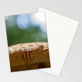 Mushroom Detail Stationery Cards