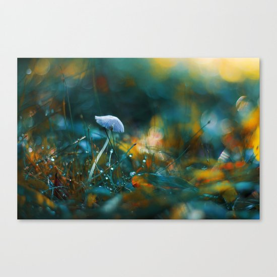Falling to the Flames Canvas Print