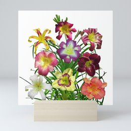Celebration of daylilies I, Hemerocallis flowers Mini Art Print