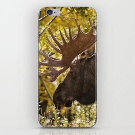 Autumn Moose iPhone Skin