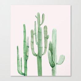Three Amigos Pink + Green Canvas Print