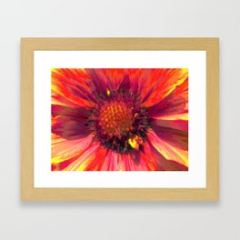 Extreme Indian Blanket Framed Art Print