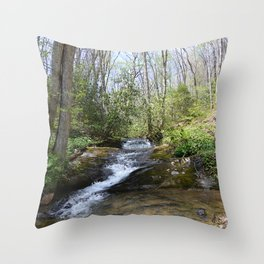 mountain stream in May Throw Pillow