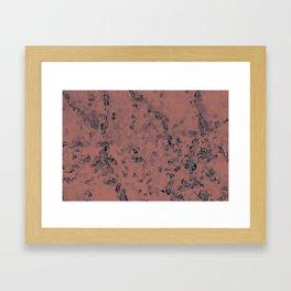 Stone coral - light Framed Art Print