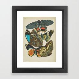 Art Nouveau Butterfly Framed Art Print