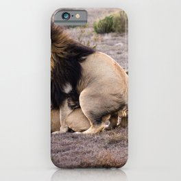 Lions mating in African savannah iPhone Case