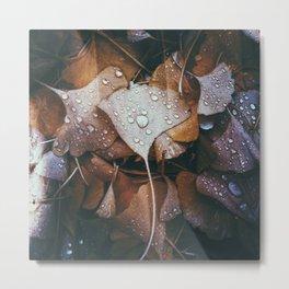 November Rain Metal Print